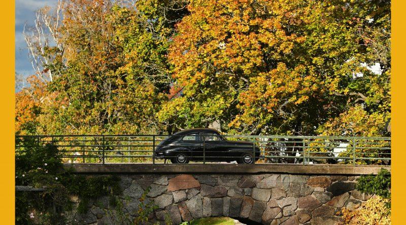 Väderbild: Fina höstfärger i Skänninge (oktober)